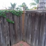 Fence repair in San Marcos